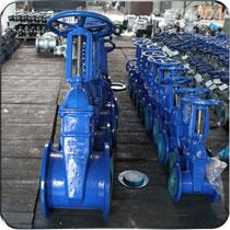 灰铸铁、球墨铸铁、铸钢等材质的弹性座封闸阀、软密封闸阀等阀门,规格从DN25—600mm口径