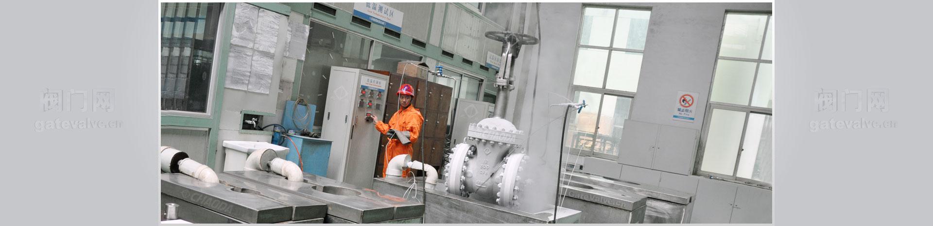 低温闸阀通过壳牌认证,超低温闸阀应用于LNG,液化天然气,液化石油,液氧,液氢介质