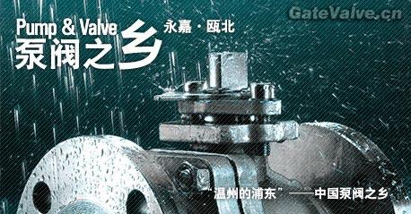 中国泵阀之乡